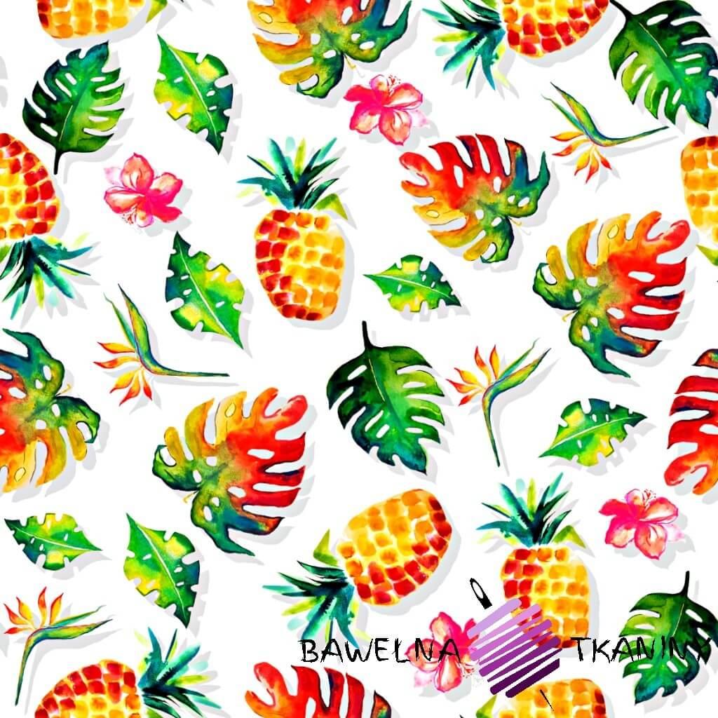 Dzianina Jersey druk cyfrowy ananasy z liściami na białym tle