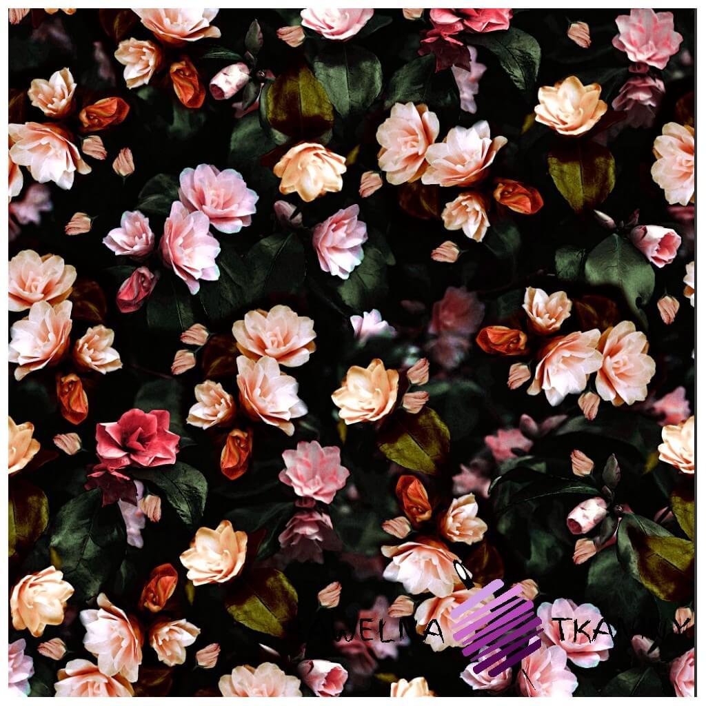 Dzianina Jersey druk cyfrowy róże na czarnym tle