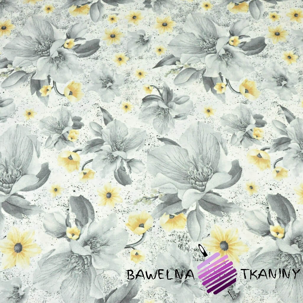 kwiaty magnolie szaro-żółte na białym tle