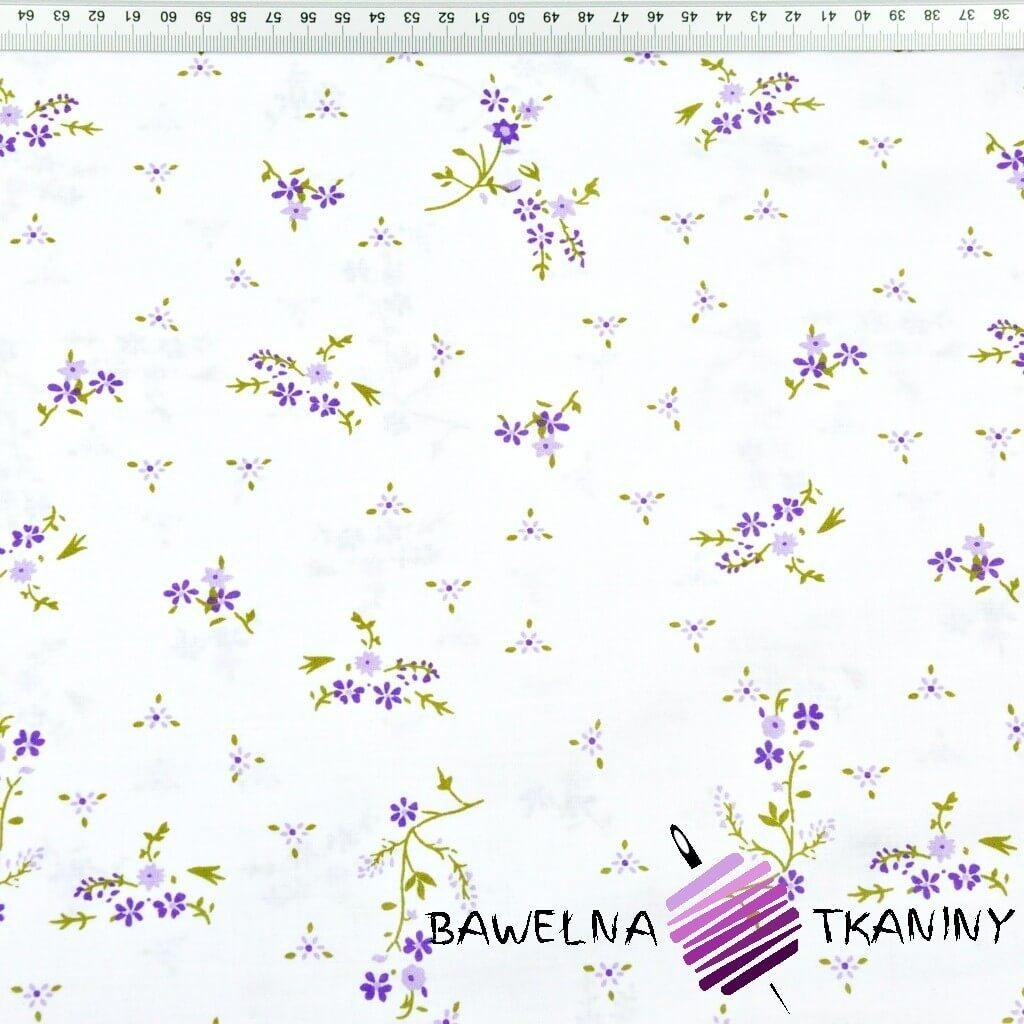 Kwiaty niezapominajki fioletowe na białym tle