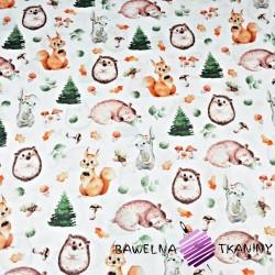 zwierzęta leśne pomarańczowo zielone na białym tle