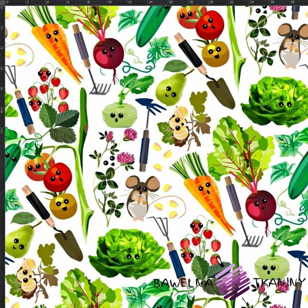 Dzianina Jersey druk cyfrowy warzywa na straganie