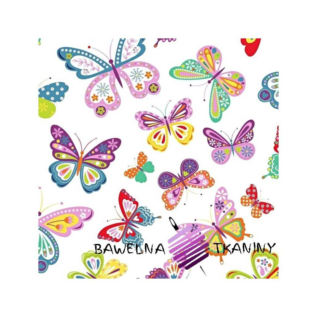 motylki wzorzyste kolorowe na białym tle