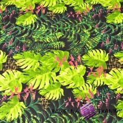 liście zielone palmowe ze storczykiem różowy na czarnym tle