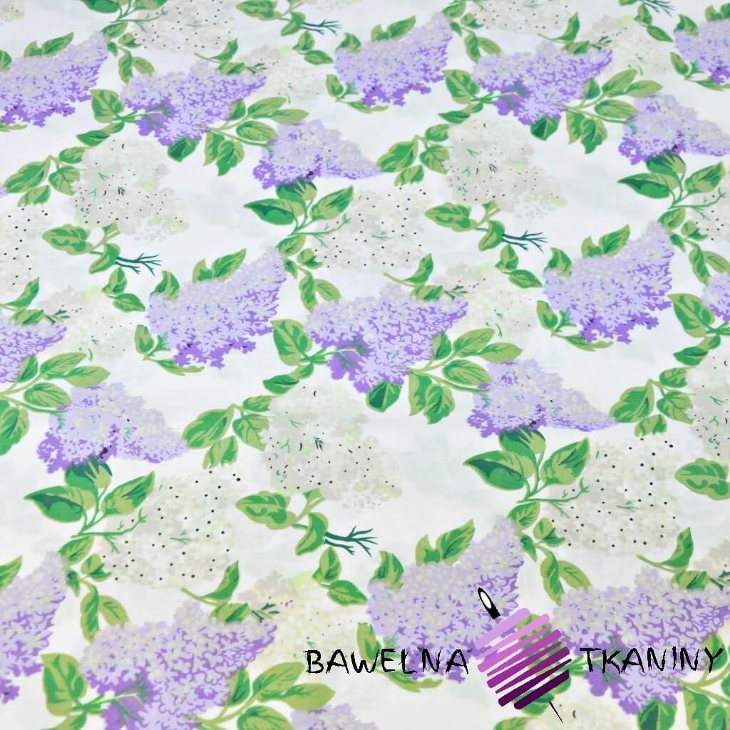 Kwiaty bzu biało fioletowe na białym tle - 220cm