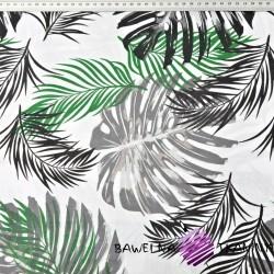 liście monstera zielono czarne na białym