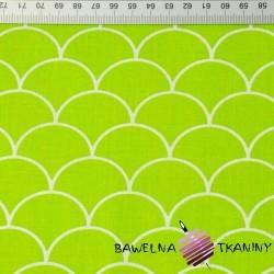 łuski białe na zielonym tle