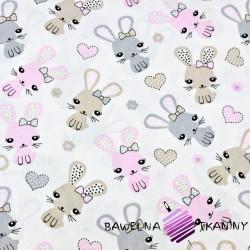 króliki różowo beżowe na białym tle