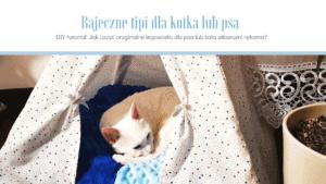Jak uszyć legowisko dla psa - zrób to sam!